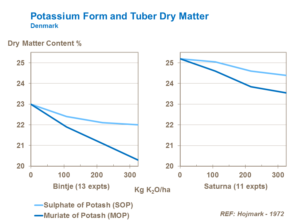 Potassium Form and Tuber Dry Matter
